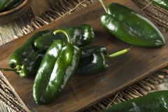 Raw Green Organic Poblano Peppers royalty free stock photos