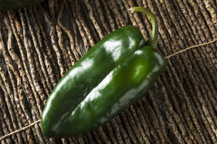 Raw Green Organic Poblano Peppers royalty free stock image