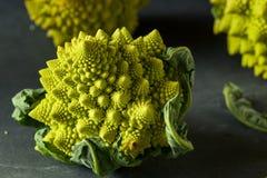 Raw Green Organic Romanesco Stock Images