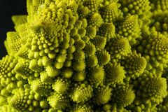 Raw Green Organic Romanesco Royalty Free Stock Images