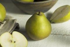 Raw Green Organic Seckel Pears Stock Image
