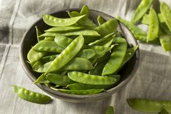 Raw Green Organic Snow Peas. Ready to Eat Royalty Free Stock Photography