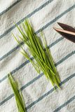 Raw Green Organic Wheat Grass royalty free stock photography