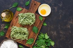 Raw green pasta with spinach. Stock Photos
