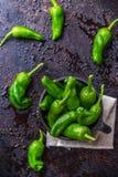 Raw green peppers jalapeno pimientos de padron traditional spanish tapas Stock Photos