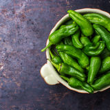 Raw green peppers jalapeno pimientos de padron traditional spanish tapas Royalty Free Stock Images