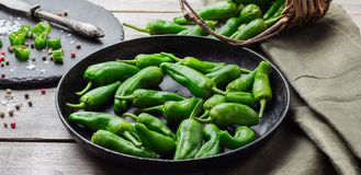 Raw green peppers jalapeno pimientos de padron traditional spanish tapas Stock Images