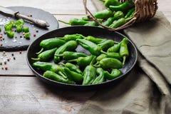 Raw green peppers jalapeno pimientos de padron traditional spanish tapas Stock Image