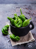 Raw green peppers pimientos de padron traditional spanish tapas Royalty Free Stock Photography