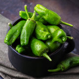 Raw green peppers pimientos de padron traditional spanish tapas Royalty Free Stock Photo
