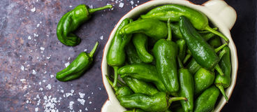Raw green peppers pimientos de padron traditional spanish tapas Stock Photography