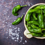 Raw green peppers pimientos de padron traditional spanish tapas Royalty Free Stock Images