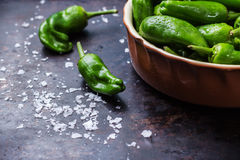 Raw green peppers pimientos de padron traditional spanish tapas Royalty Free Stock Photos