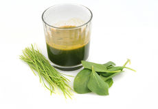 Raw Green spinach and wheat grass juice Royalty Free Stock Images