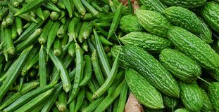 Raw green vegetables in a market Stock Images