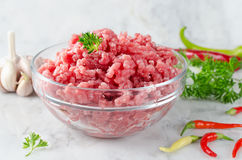 Raw ground beef and ingredients Royalty Free Stock Image