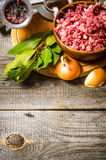 Raw ground beef Stock Images