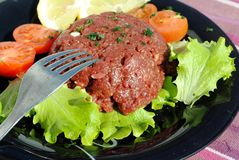Raw ground beef with vegetables Royalty Free Stock Photo