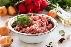 Raw ground meat. In white bowl. Minced pork on a background of fresh organic vegetables Stock Images