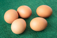Raw group of eggs put on green sack Stock Images