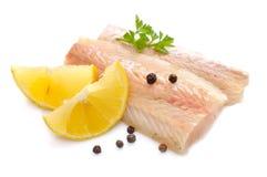 Raw Hake fish fillet pieces. Stock Photos