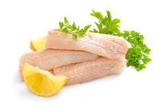 Raw Hake fish fillet pieces. On white background Royalty Free Stock Photo