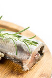 Raw hake fish with rosemary and copy space white background.  Stock Images
