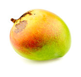 Raw half ripe mango. Detailed studio shot Stock Photos