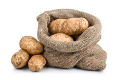 Raw Harvest potatoes in burlap sack Stock Photography