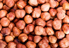 Raw hazelnuts Stock Photo