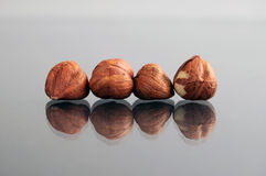 Raw Hazelnuts Chestnuts Stock Photos