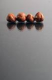 Raw Hazelnuts Chestnuts Stock Images