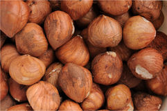 Raw Hazelnuts Closeup Royalty Free Stock Photos