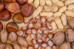 Raw hazelnuts, pecan nuts and chestnuts on a wooden background. Oleaginous Stock Photo