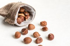 Raw hazelnuts on white background and jute drawstring pouches bag Stock Images