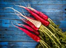 Raw healthy food vegetables. Fresh radishes, raw healthy food vegetables on blue wooden background Royalty Free Stock Photos