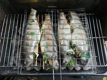 Raw with herbs filled trouts on the BBQ Royalty Free Stock Photo