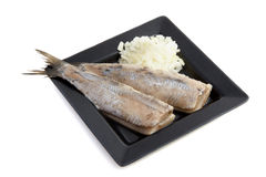 Raw herring Royalty Free Stock Image