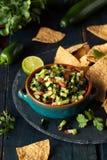 Raw Homemade Cucumber Pico De Gallo Salsa royalty free stock images