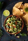 Raw Homemade Cucumber Pico De Gallo Salsa Royalty Free Stock Photo