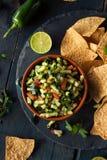 Raw Homemade Cucumber Pico De Gallo Salsa Stock Photo