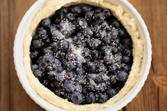 Raw homemade round open pie with whole wild blueberries with sug Stock Image