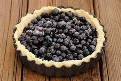 Raw homemade round tart with whole wild blueberries in metal bak Royalty Free Stock Photo