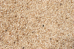 Raw Hulled Sesame Seeds. Close-up of hulled raw sesame seeds shot with Canon 20D stock photo