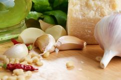 Raw Ingredients for pasta pesto Stock Photography