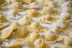 Raw italian cappelletti, fresh homemade pasta. Stock Photos