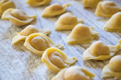 Raw italian cappelletti, fresh homemade pasta Stock Image