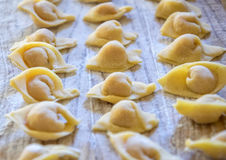 Raw italian cappelletti, fresh homemade pasta. Stock Image