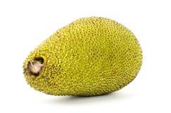 Raw jackfruit Stock Photo