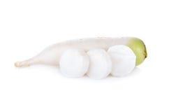 Raw Japanese radish on white background. Raw Japanese radish on a white background Stock Images